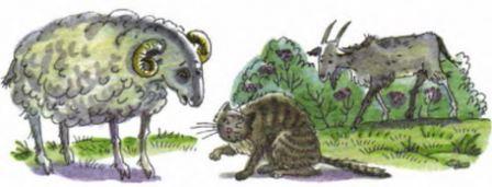 Ушинский плутишка кот